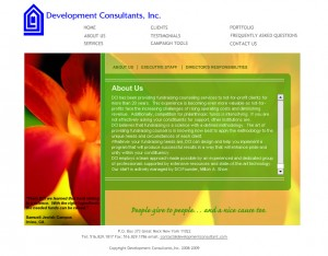 Development Consultants