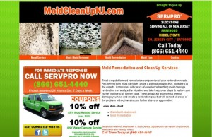 servpro-moldcleanup-moldremediation
